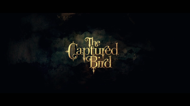 capturedbird